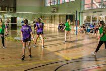 Turniej piłki siatkowej  w Konarzynach 2019-15 1